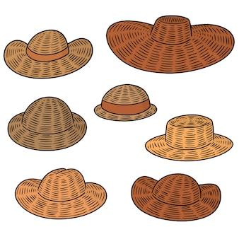 Conjunto de vetores de chapéus de palha