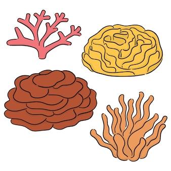 Conjunto de vetores de coral
