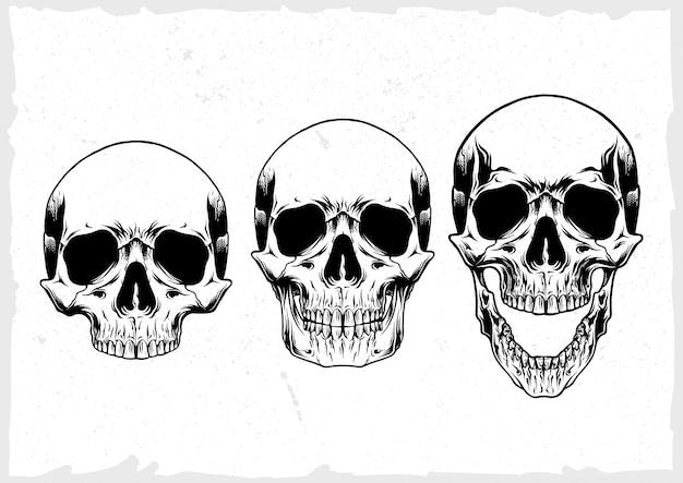 Conjunto de vetores de crânio