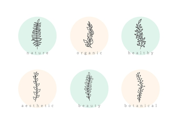 Conjunto de vetores de elementos de logotipo floral minimalista botânico mão desenhada. ramos de doodle naturais com fundo de círculo, ícone de destaque de história de modelo para cosméticos, moda, ioga.