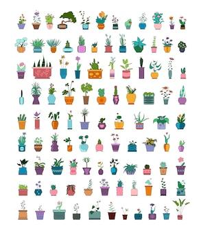 Conjunto de vetores de flores em vasos e vasos