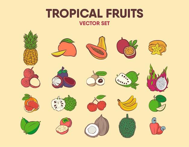 Conjunto de vetores de frutas tropicais