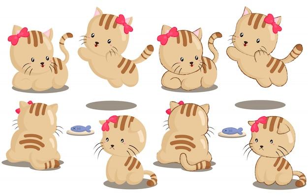 Conjunto de vetores de gatos bonitos