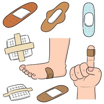Conjunto de vetores de gesso médico