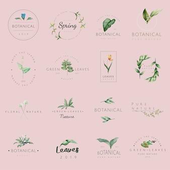 Conjunto de vetores de logotipo de natureza e planta