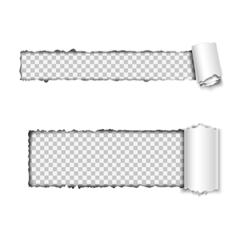 Conjunto de vetores de papel horizontal rasgado