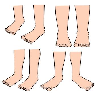 Conjunto de vetores de perna de desenho animado
