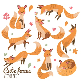 Conjunto de vetores de raposas fofas