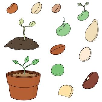 Conjunto de vetores de sementes de plantas