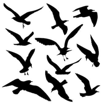 Conjunto de vetores de silhuetas negras de aves voadoras