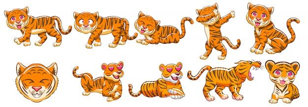 Conjunto de vetores de tigre clipart