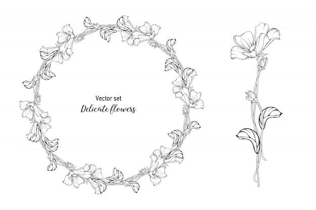 Conjunto de vetores. flores delicadas
