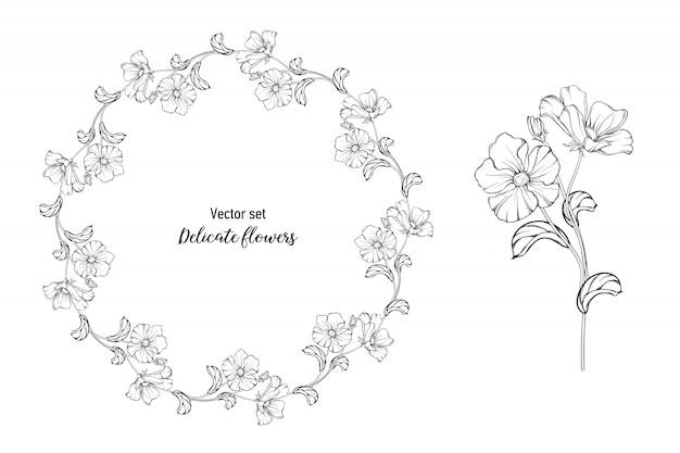 Conjunto De Rosas Corais Desenho A Mao Vetor Premium