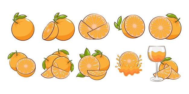 Conjunto de vetores laranja coleção