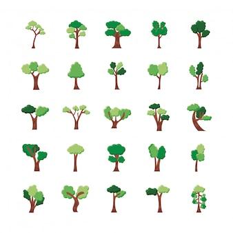 Conjunto de vinte e cinco árvores com ícones de coleção