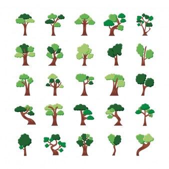 Conjunto de vinte e cinco árvores com ícones