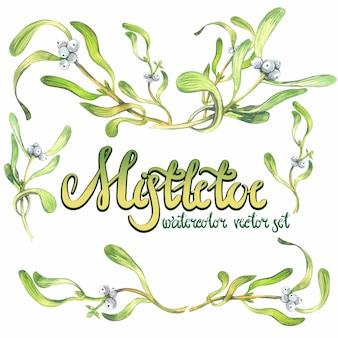 Conjunto de visco em aquarela. elementos botânicos de mão desenhada isolados Vetor Premium