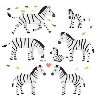 Conjunto de zebras, ilustração infantil.