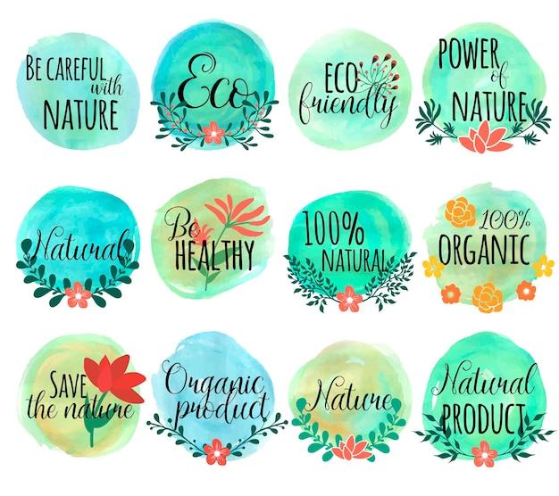 Conjunto desenhado com folhas de flores e cuidado com a natureza eco friendly power and nature e outras descrições
