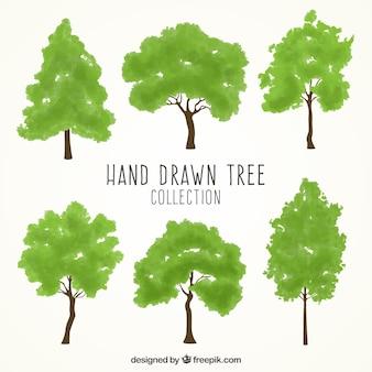 Conjunto desenhado mão de árvores verdes