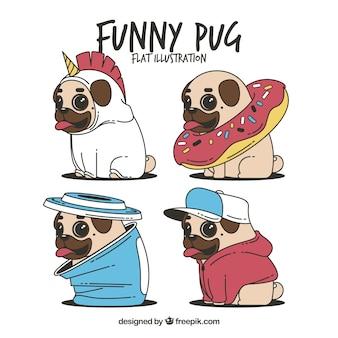 Conjunto divertido de pugs com trajes