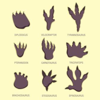 Conjunto educacional para pegadas infantis de dinossauros: tiranossauro, velociraptor, espinossauro, carnotauro, braquiossauro, diplodocus, triceratops, estegossauro, pteranodonte. ilustração vetorial