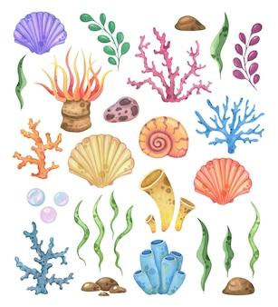 Conjunto em aquarela de conchas, corais e flora marinha
