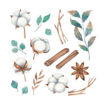 Conjunto em aquarela de elementos florais de flores de algodão, galhos e especiarias de canela, anis