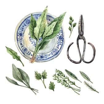 Conjunto em aquarela de ervas e ferramentas de jardim
