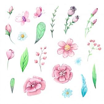 Conjunto em aquarela de plantas, folhas e frutos