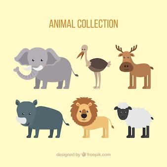 Conjunto encantador de animais bonitos