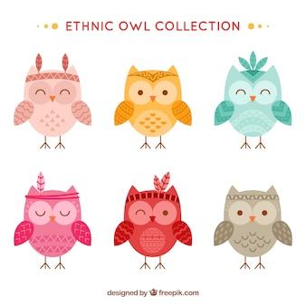 Conjunto engraçado de corujas étnicas