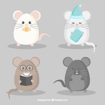 Conjunto engraçado de raças de ratos