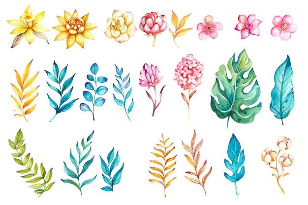 Conjunto floral aquarela flor