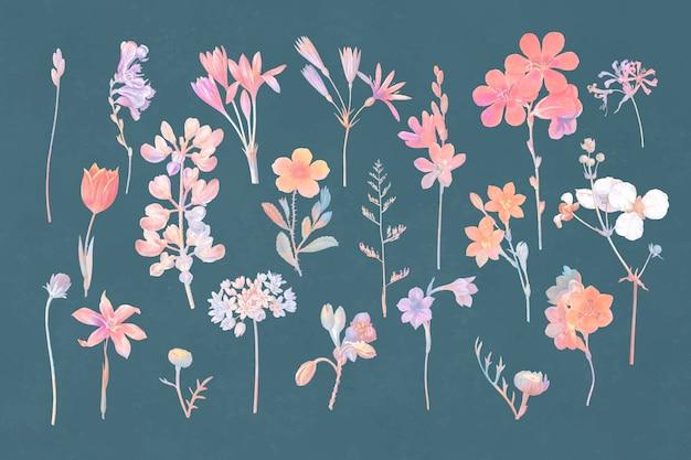 Conjunto floral colorido