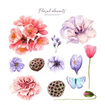 Conjunto floral com aquarela para design.