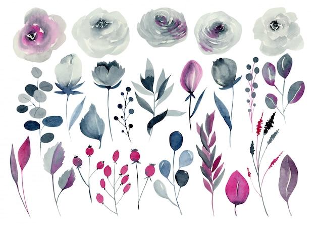 Conjunto floral em aquarela, rosas índigo e carmesim, outras flores e plantas, mão desenhada isolado