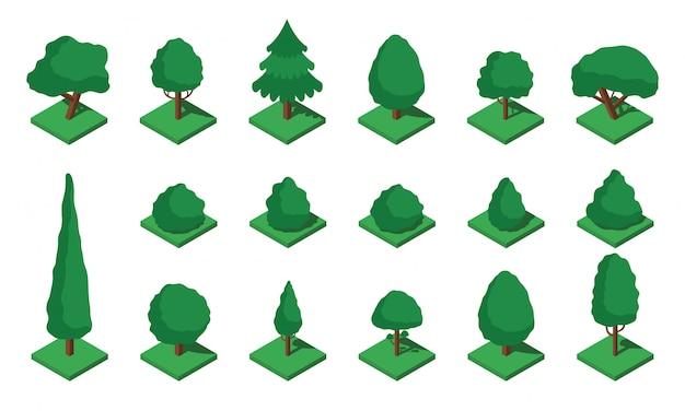 Conjunto grande árvore isométrica