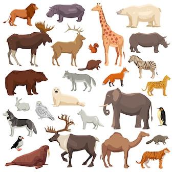 Conjunto grande de animais