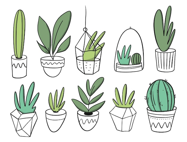 Conjunto grande de plantas em vasos brancos. estilo de desenho animado. isolado.