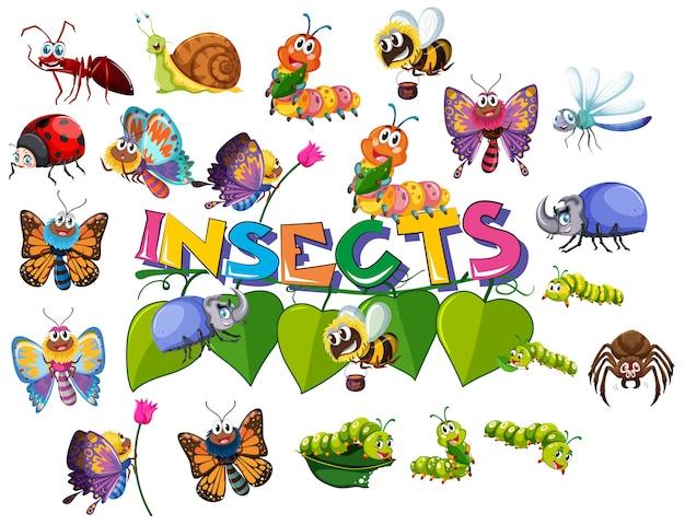 Conjunto grande pacote de insetos