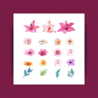 Conjunto isolado de flores em aquarela em branco