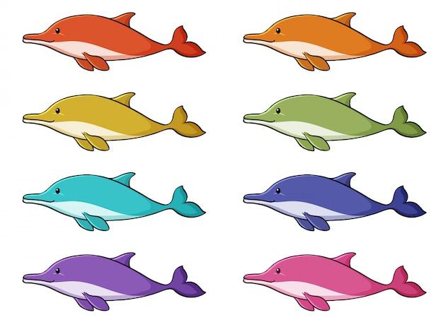 Conjunto isolado de golfinho em muitas cores