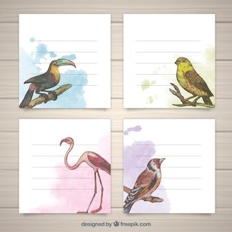 Conjunto moderno de cartões de aquarela com pássaros