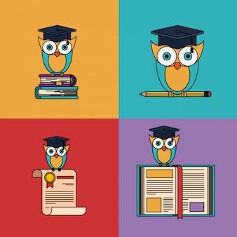 Conjunto multicolorido com coruja com elementos de escola e graduação