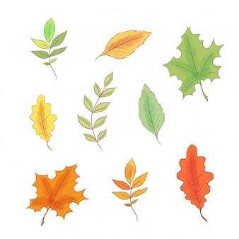 Conjunto no estilo de outono de desenho de mão e folhas.