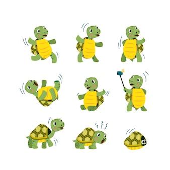 Conjunto pequeno bonito da tartaruga