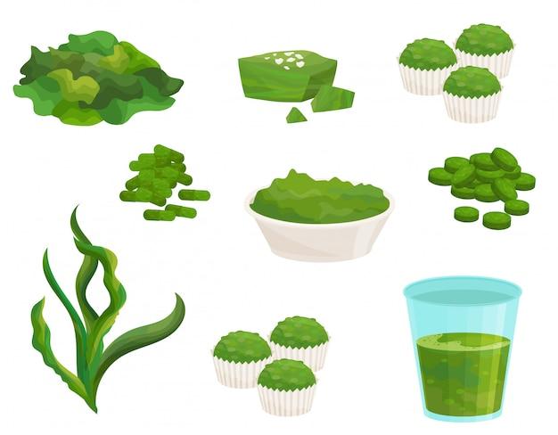 Conjunto plano de algas spirulina. suplemento natural. algas congeladas. tigela de pó, copo de suco, cupcakes