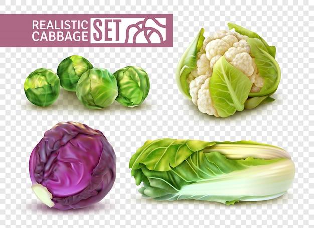 Conjunto realista com couve de bruxelas couve-flor couve chinesa isolada em transparente