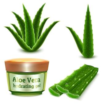 Conjunto realista de aloe planta e produto de gel hidratante cosmético